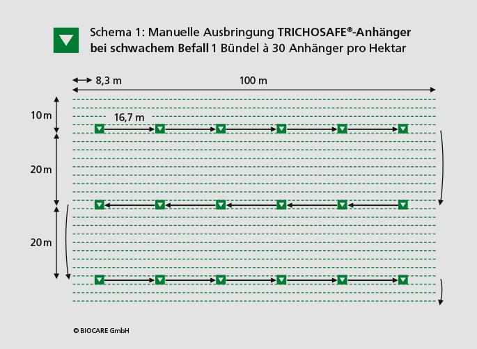 Handapplikation – Biocare GmbH Biological Plant Protection